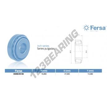 05066-05185-ASFERSA